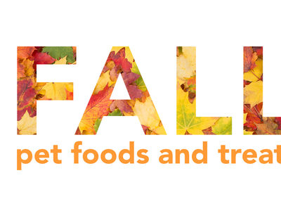 Fall slideshow header