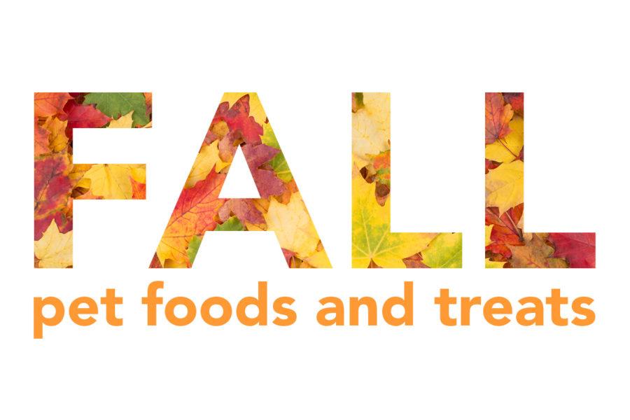 Fall slideshow header
