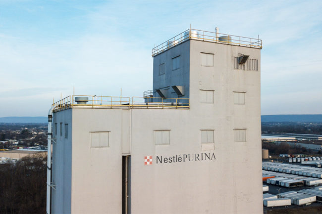 Purina PetCare leads in Nestle's full-year 2020 financial performance
