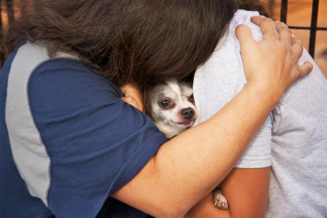 PetSmart Charities fighting pet food insecurity