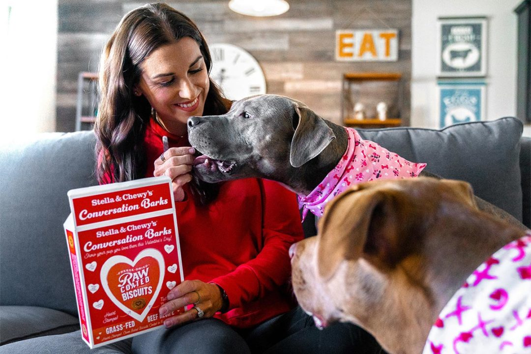 Stella & Chewy's giving away Valentine's Day dog treats