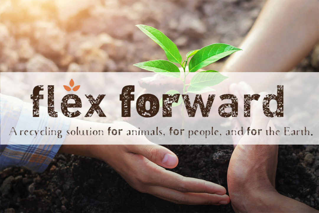 Flex Forward wraps up pet food packaging recycling pilot with success