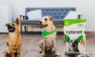 111320 v dog distribution lead