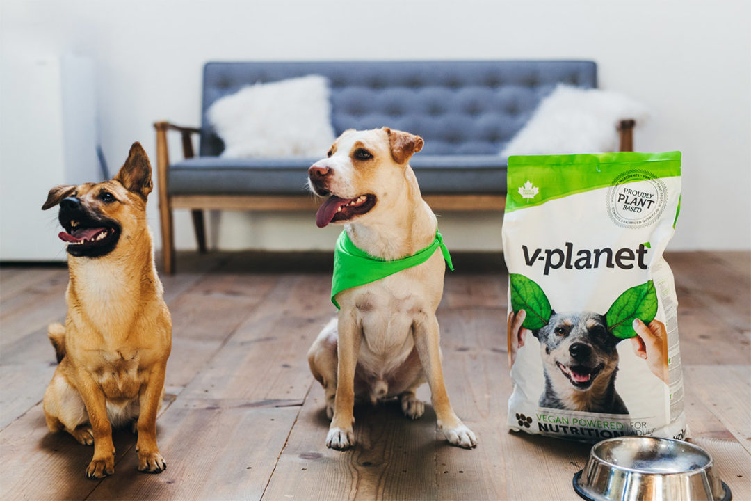 V-planet vegan dog food now available in Japan, South Korea