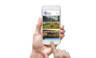 Afia-new-website-web