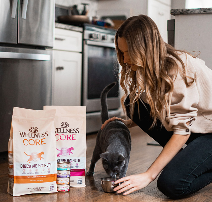 Wellness CORE Digestive Health for cats