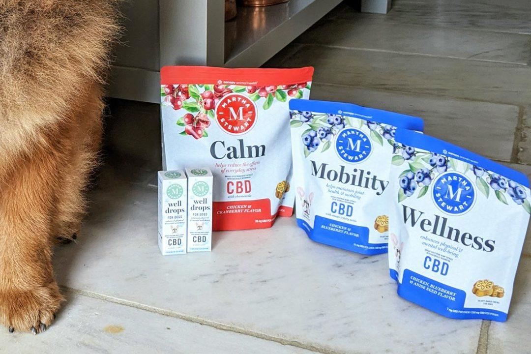 Martha Stewart launches CBD dog supplement line