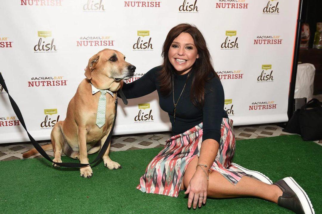 Nutrish providing pet food for senior dog adoptions