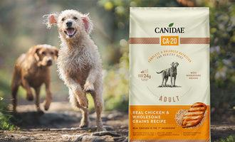 021121 canidae ca lead