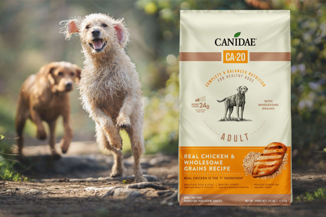 Canidae launches dog food line with varying protein levels
