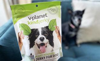 022221 v dog kindjerky lead