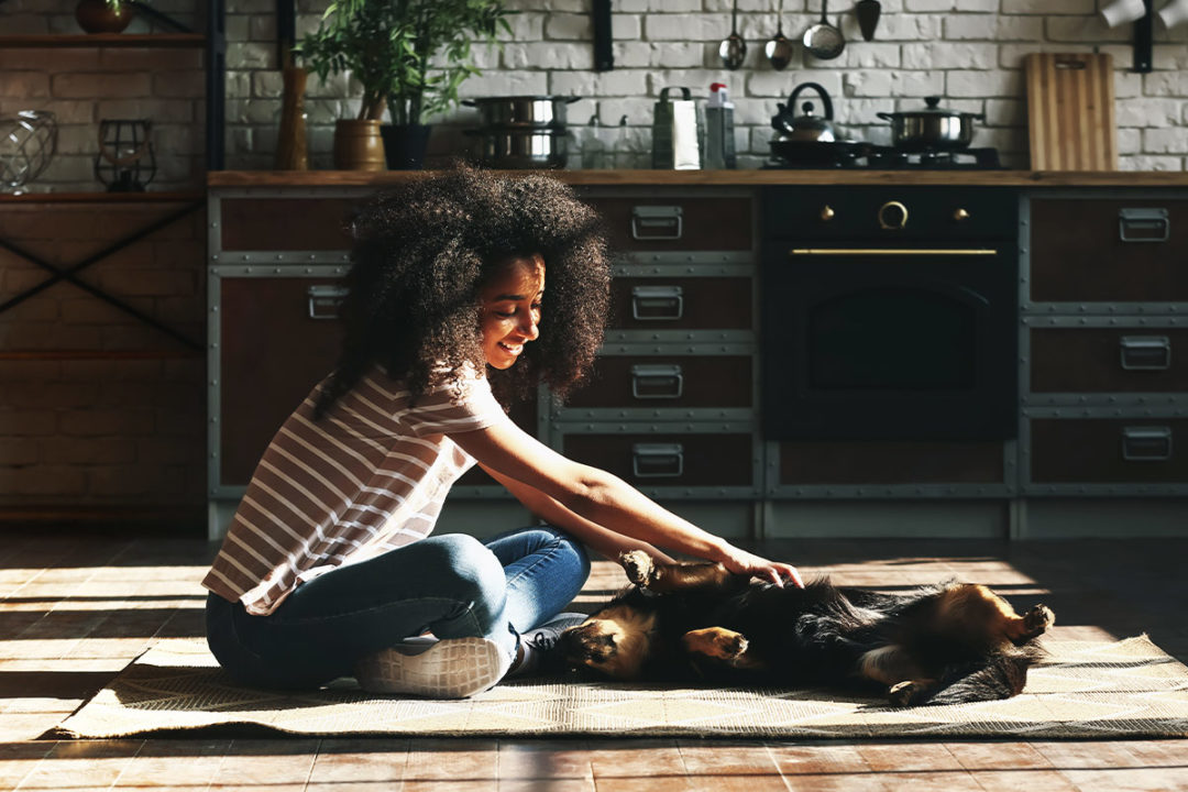 Modern pet owners prioritizing health, happiness of pets