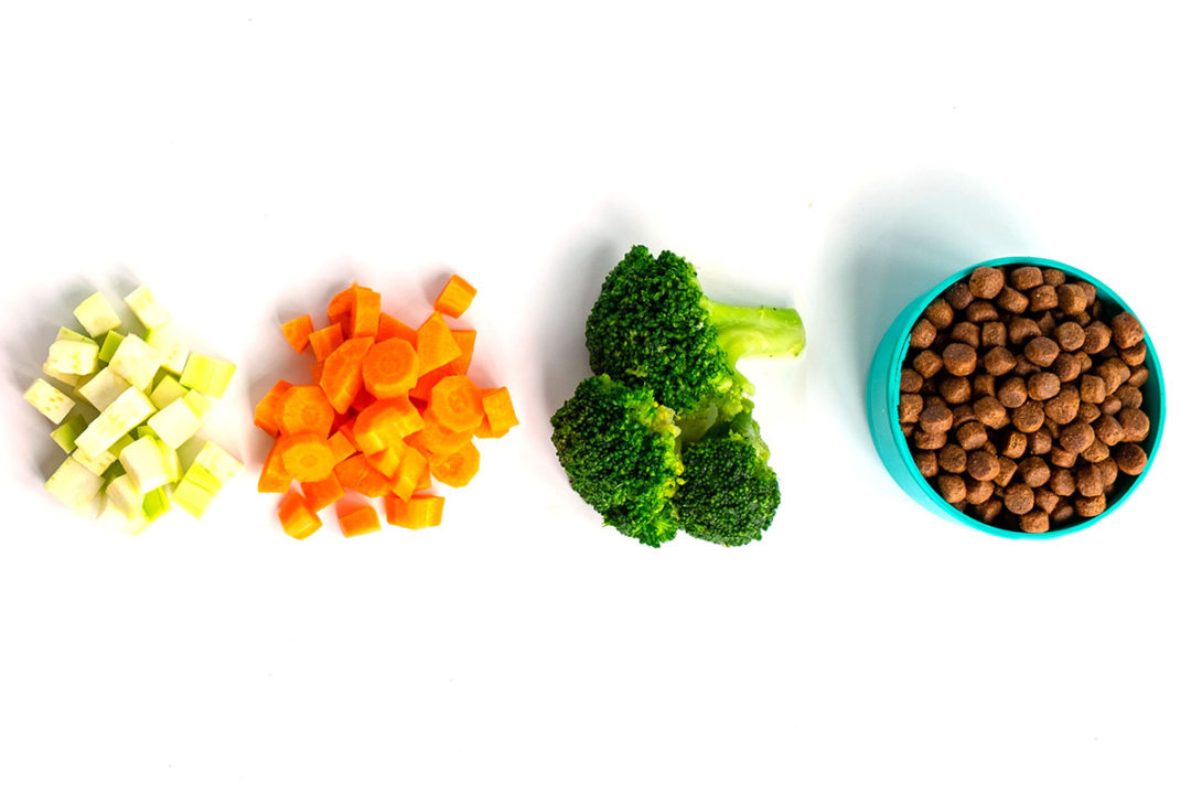 IFEEDER shares US pet food, feed consumption trends