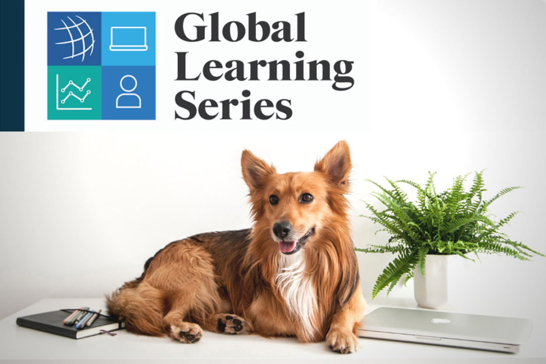 Sessions, presentations to attend during Global Pet Expo 2021