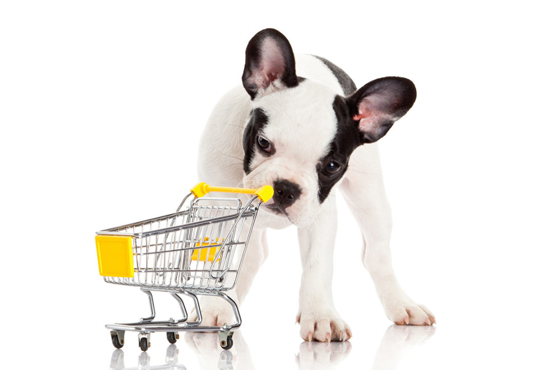 NielsenIQ shares pet food sales data, product category trends and grain-free implications
