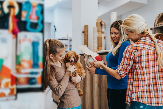 NielsenIQ shares pet retail data and trends for 2020 pet food sales