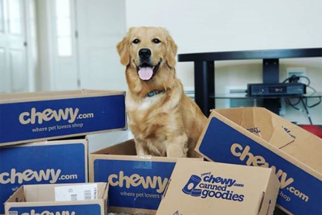 Chewy reports full-year earnings, sales up 47% from 2019
