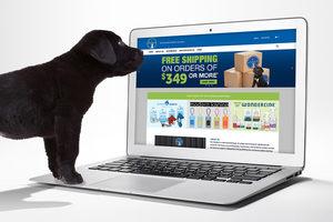 040221 pet palette website lead