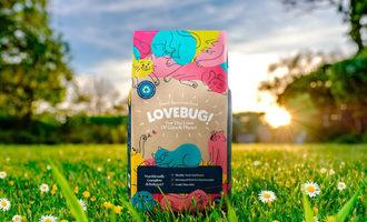 040821 lovebug lead