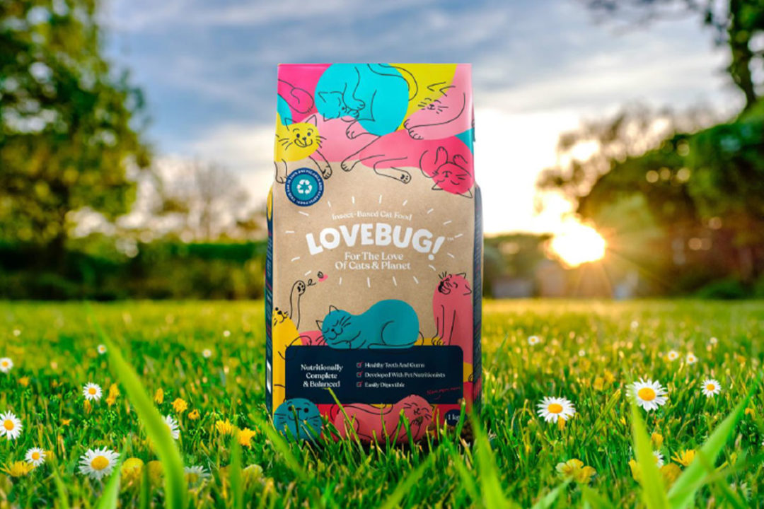 First 100% insect-based cat food launched by Mars Petcare in the United Kingdom