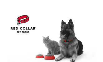 041521 red collar clinton expansion lead
