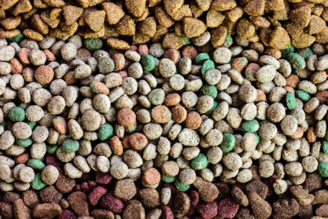 TAMU taking pet food extrusion course online for 2021