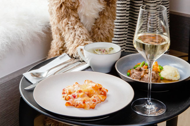 Global hotel chain adds dog menu for traveling companions