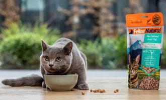 050421 kkr natural pet food lead