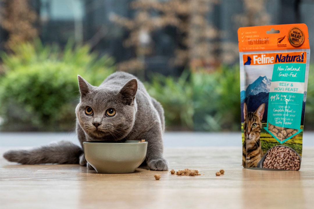 Natural Pet Food Group acquired by KKR