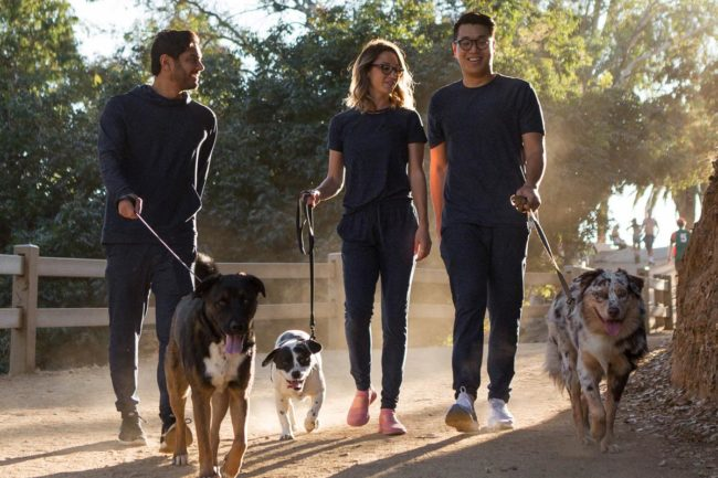 Jinx to reimburse pet owners who adopted dogs in 2020 up to $150