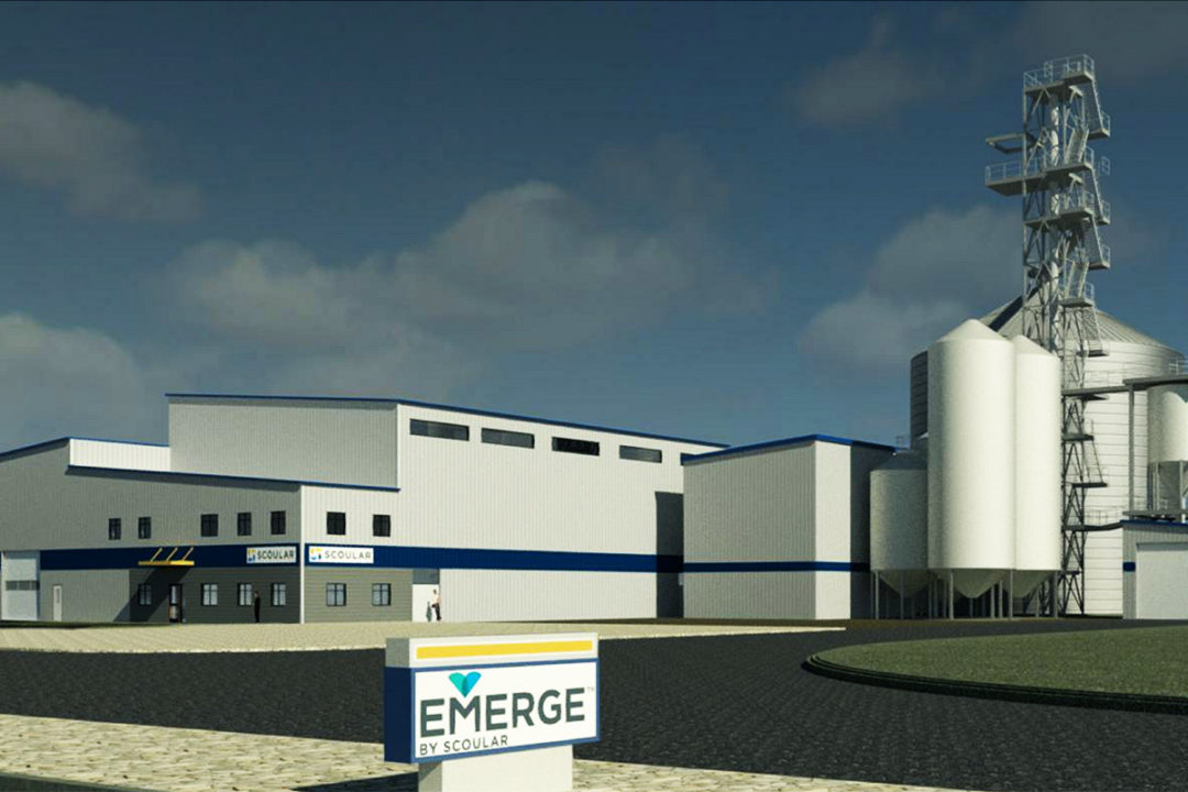 Scoular's new barley-pased protein product for feed named Emerge