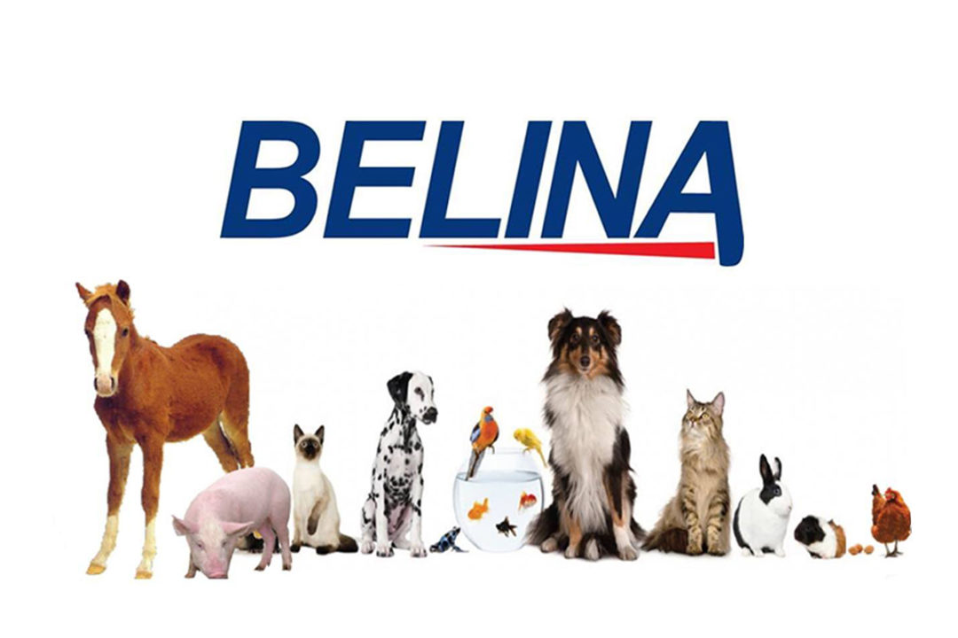 Nutresca plans to fully acquire Belina's pet food, feed and aquaculture businesses in Costa Rica