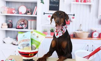052920 choice pet remys kitchen lead