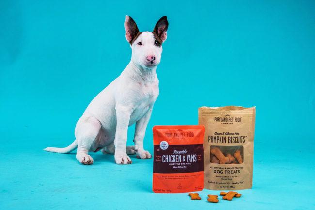 Christiani promoted to head of marketing at Portland Pet Food Company