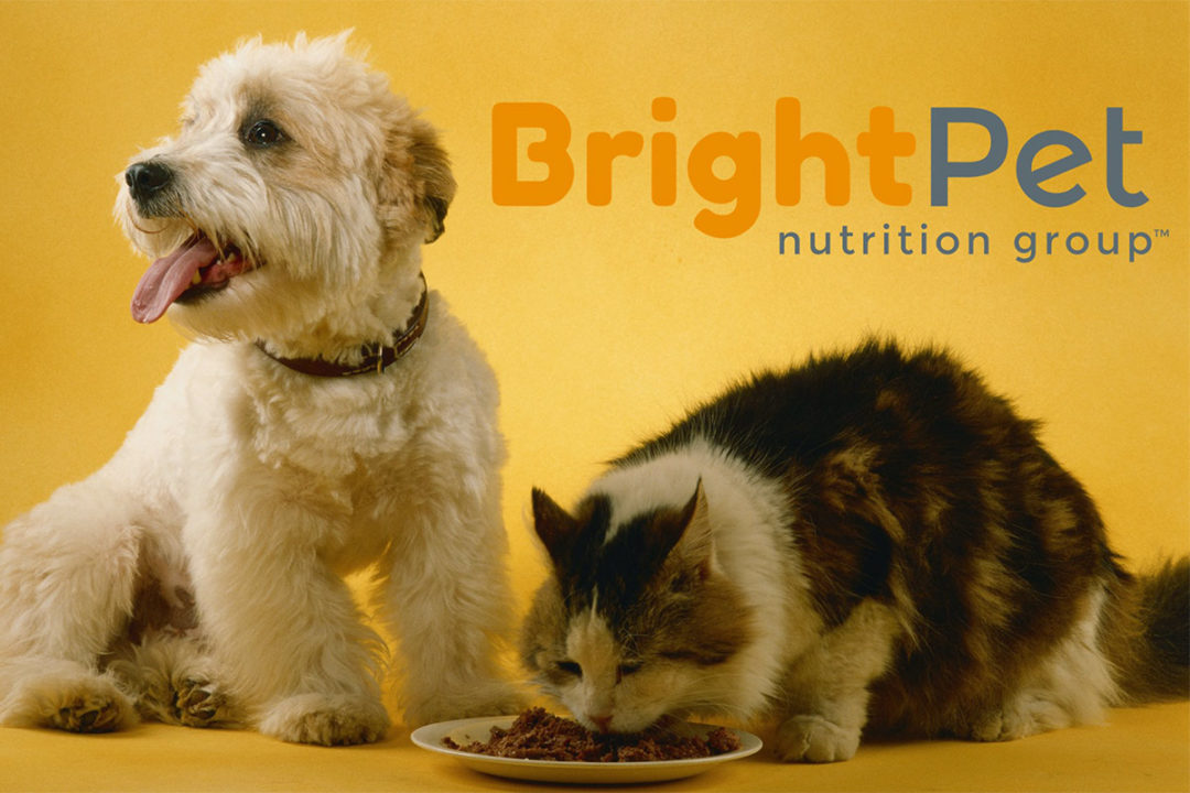 Dave Kowal appointed CEO of BrightPet