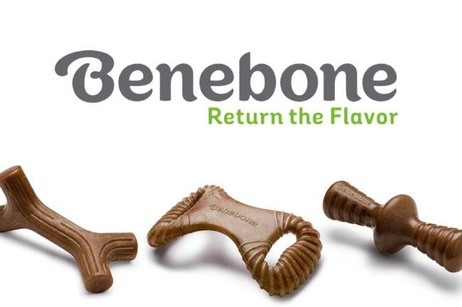 Rob Stephenson joins Benebone as senior director of sales