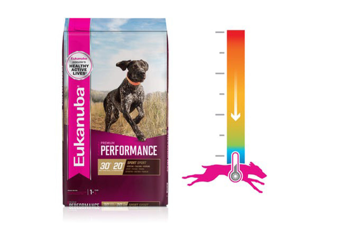 Eukanuba introduces food technology to keep core temperature down in active dogs
