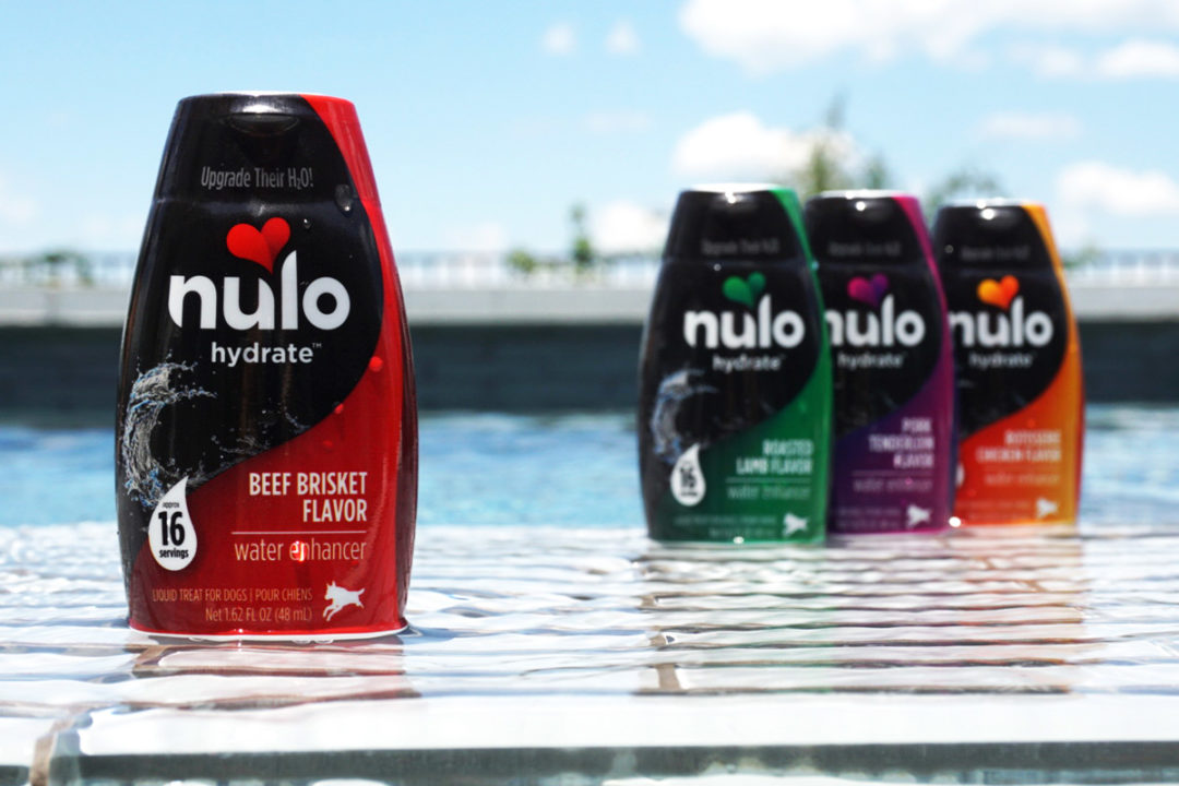 Nulo rolls out hydration supplement for dogs
