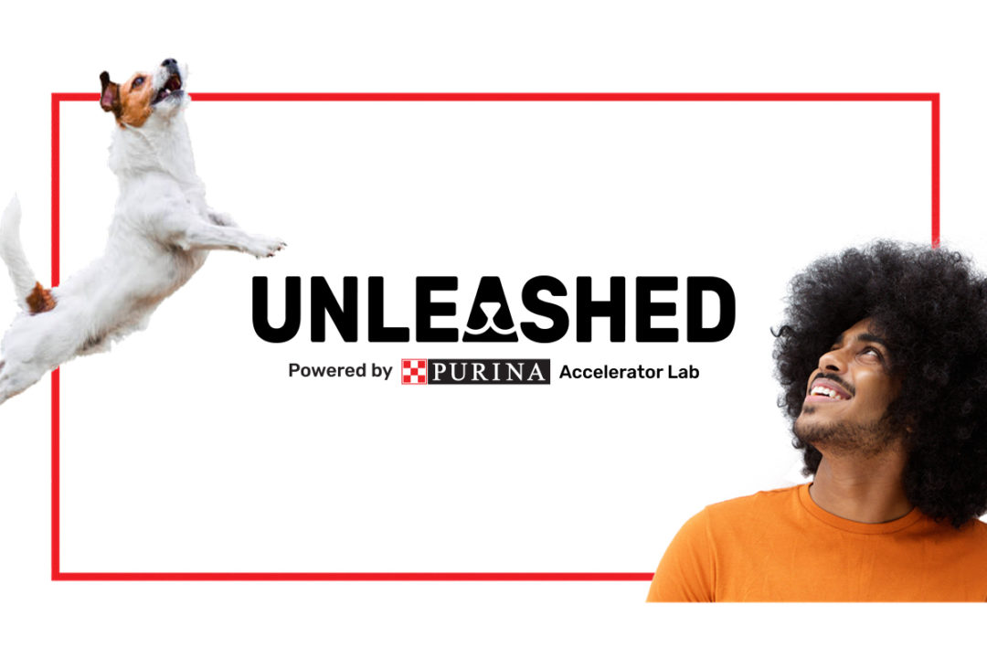 Biokind and Pawpot named among winners of Purina's 2021 UNLEASHED Accelerator Lab Programme