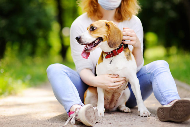 APPA details pet owner sentiments, purchasing behavior in ongoing study