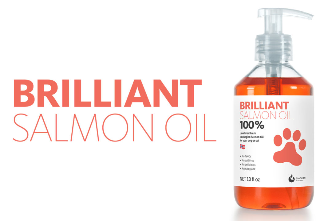 Hofseth to launch Brillian Salmon Oil pet supplement in North America