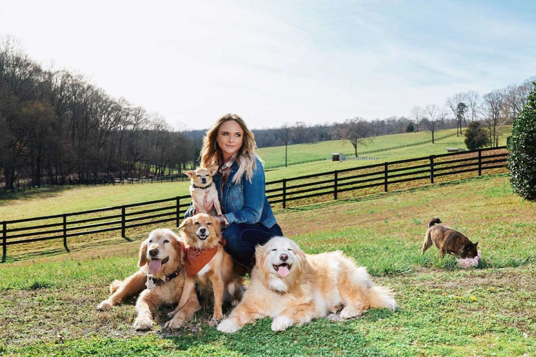 MuttNation launches On The Farm through Tractor Supply Company