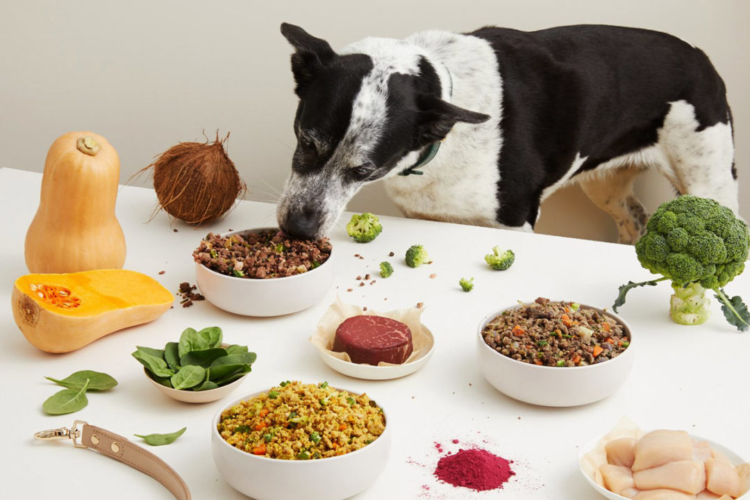 Australian fresh pet food company to accelerate scale with new investments