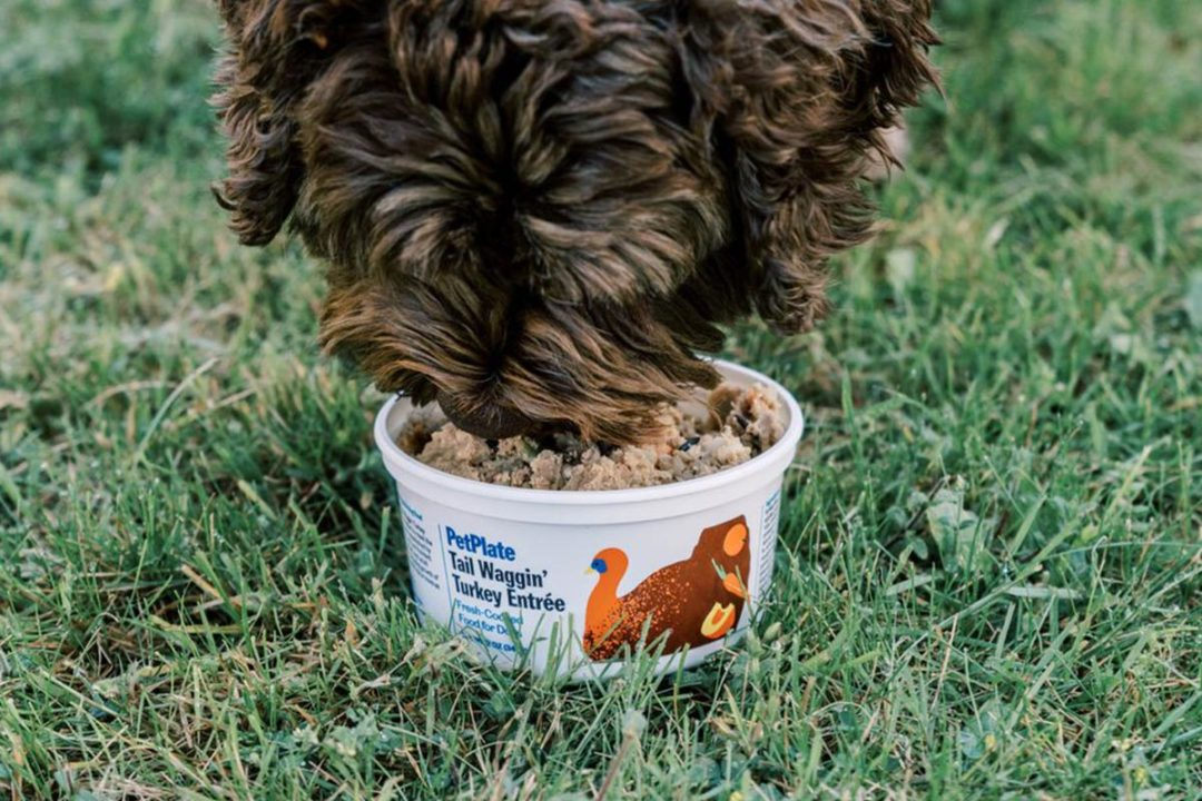 Pet Supplies Plus to carry PetPlate fresh dog foods at select US locations