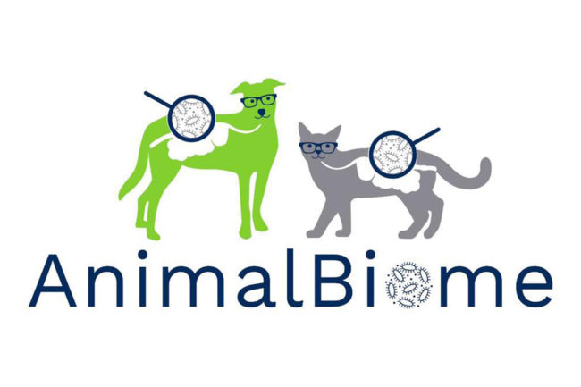 Cargill invests in AnimalBiome to accelerate companion animal microbiome R&D