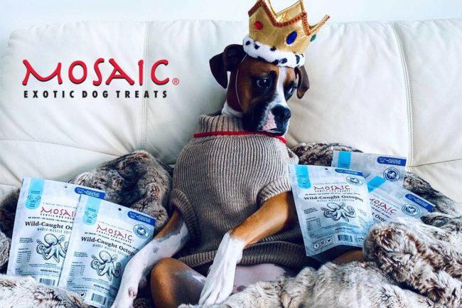 Mosaic expands distribution through Pet Food Experts