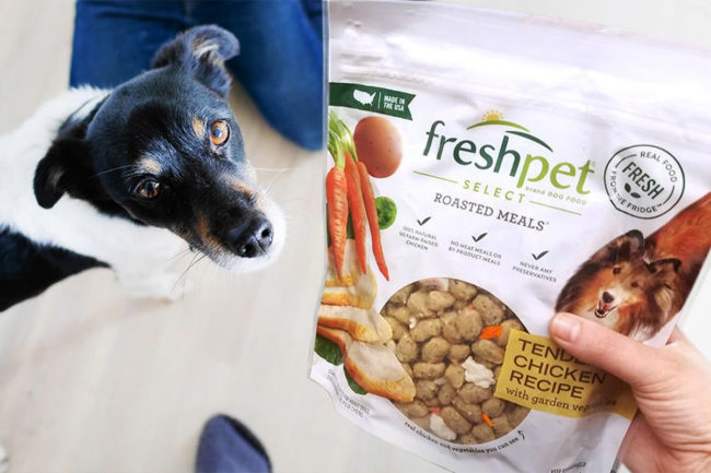 Freshpet reports second quarter 2021 financial earnings and capital expenditure updates