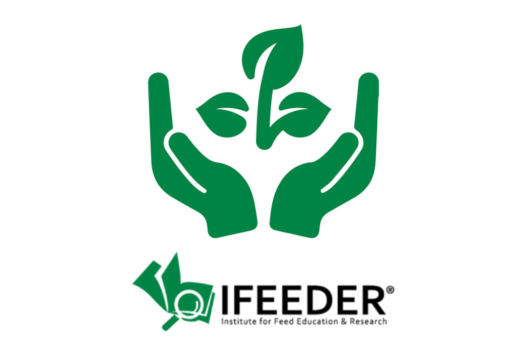 IFEEDER accepting research proposals for animal food industry sustainability