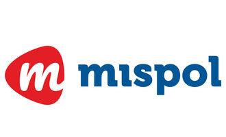 081121 ppf mispol lead