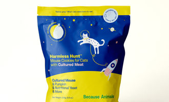 081721 because animal harmless hunt lead